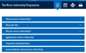 micro-internship